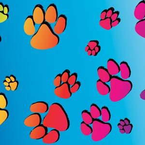 3585 - colorful paws