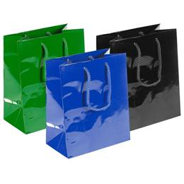 Medium Glossy Gift Bag