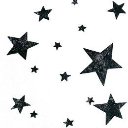 Black 5-Point Stars on White Gossamer