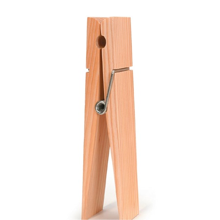 Giant Craft Clothes Pin