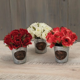 Roses In Metal Bucket