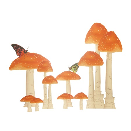 Magical Mushrooms Kit (set of 8)