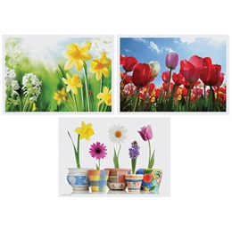 Spring Variety Placemats Multi-pack